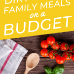 Got more month left and your grocery budget is already shrinking? Whip up one of these dirt cheap meals for a family to rescue your budget! Try these quick cheap family meals to make your food dollar stretch. Click through to get inspired!